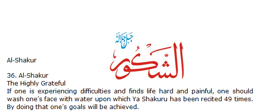 Allah name Al-shakro
